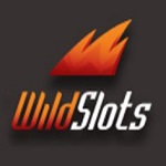 wild-slots-logo